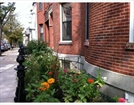 184 WEBSTER ST, BOSTON, MA 02128  Photo 12