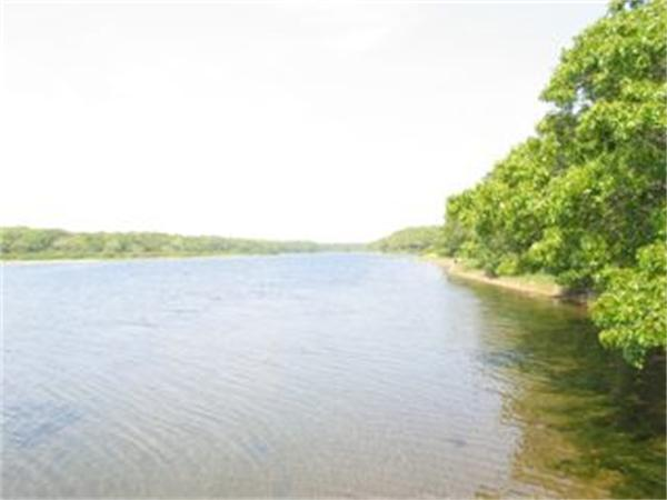 Photo #19 of Listing 82 Turkeyland Cove Rd, ED310