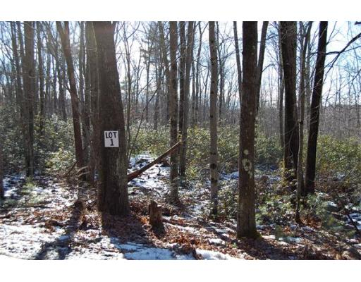 Land for Sale at 1 Buteau Road Spencer, 01562 United States