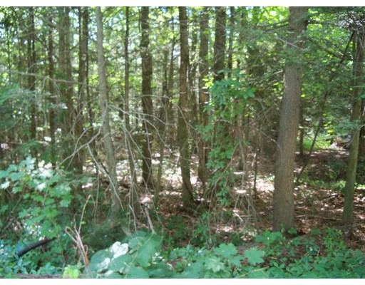 Additional photo for property listing at 59 New Boston Road  Sturbridge, Massachusetts 01566 Estados Unidos