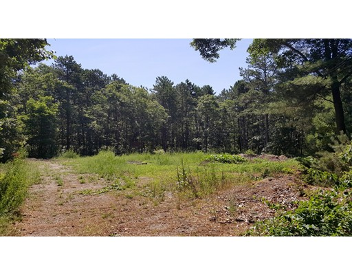 Additional photo for property listing at 147 Peppercorn Lane  Barnstable, Massachusetts 02635 Estados Unidos