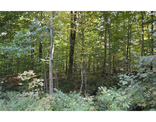 Lot 131 Partridge Lane, Becket, MA 01223