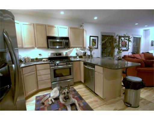Townhome / Condominium for Rent at 87 Fort Avenue Boston, Massachusetts 02119 United States