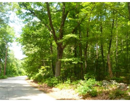 Additional photo for property listing at Burlingame Rd- Lot 1  Palmer, Massachusetts 01069 United States