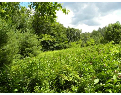 Land for Sale at Branch Hill Road Heath, Massachusetts 01346 United States