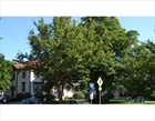 Andover Massachusetts townhouse photo