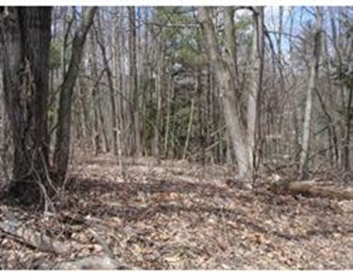 Lot 1 Dickinson Hill RD, Russell, MA 01071