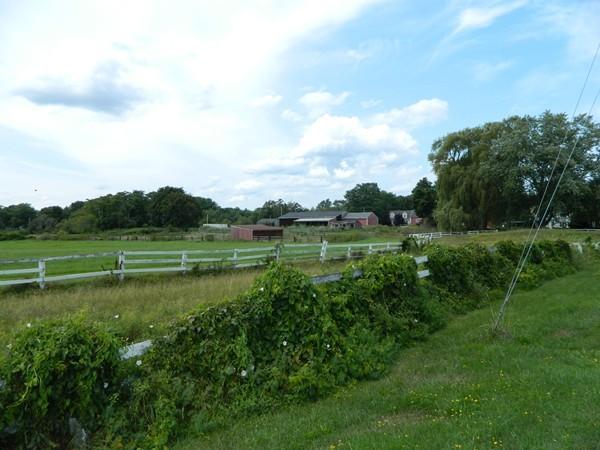 1 Crow Lane, Newburyport, MA, 01950 Primary Photo