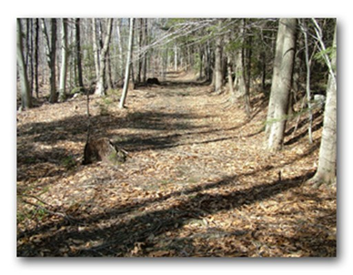 Land for Sale at 10 Bray Road Buckland, Massachusetts 01370 United States