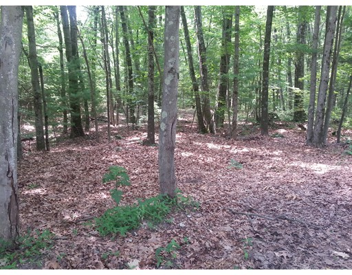 Additional photo for property listing at 4 Burlingame Road  Palmer, Massachusetts 01069 Estados Unidos