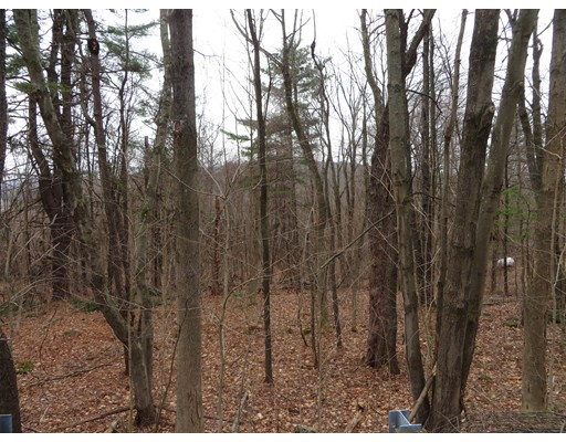 Old State Road, Erving, MA 01344