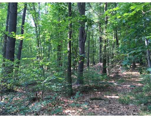Land for Sale at Longview Street Longview Street Palmer, Massachusetts 01069 United States