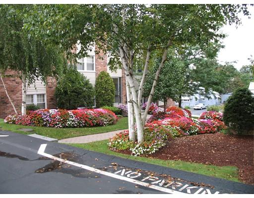 Appartement pour l à louer à 479 South Broadway #varies 479 South Broadway #varies Lawrence, Massachusetts 01843 États-Unis