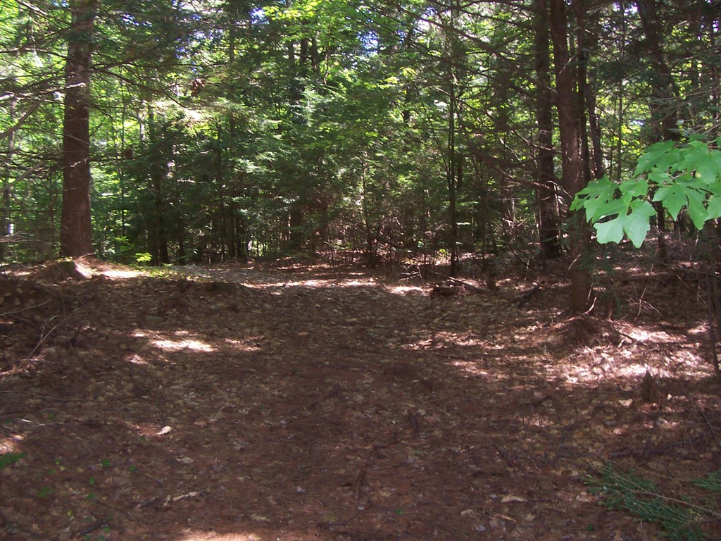 Property for sale at Lot 0 Colony Rd, Phillipston,  MA 01331