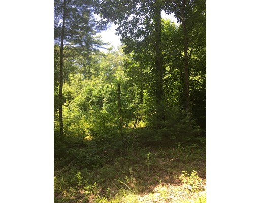 Land for Sale at 10 Doane Road Ware, 01082 United States