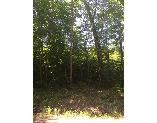 Land for Sale at 6 Doane Road Ware, 01082 United States