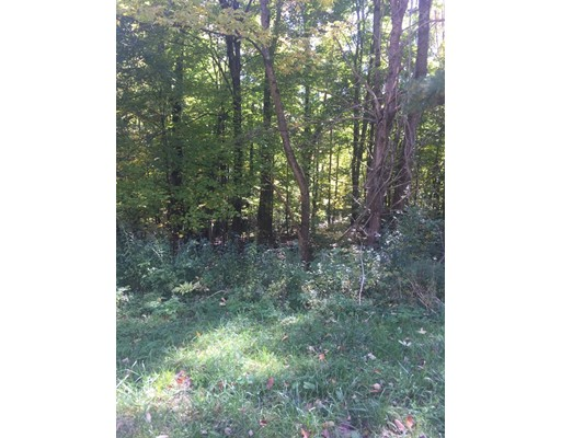 Land for Sale at East Slope Road Richmond, Massachusetts 01254 United States