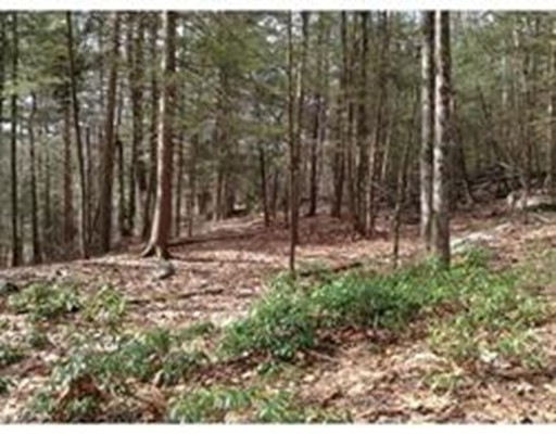 Land for Sale at 262 North Road Westhampton, Massachusetts 01027 United States
