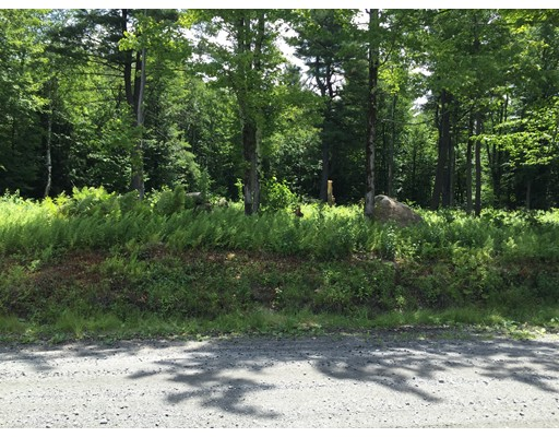Land for Sale at West Hartland Road Granville, Massachusetts 01034 United States