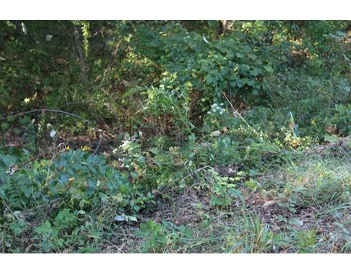 Land for Sale at 2 West and Riedell Douglas, Massachusetts 01516 United States