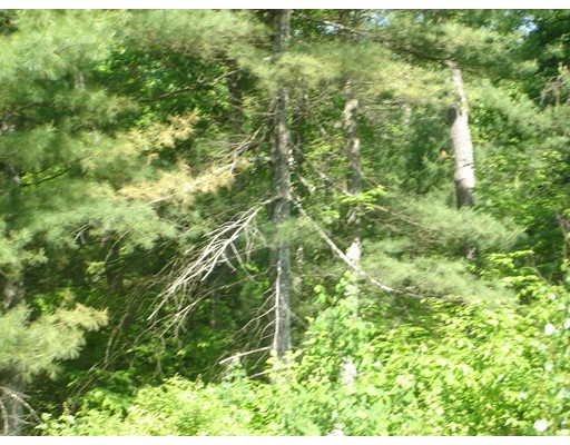 Land for Sale at 11 State Street Belchertown, 01007 United States