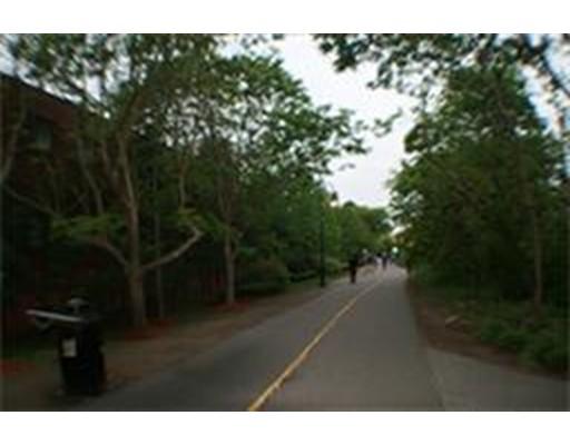 Additional photo for property listing at 373 Highland Ave #318 373 Highland Ave #318 Somerville, Massachusetts 02144 États-Unis