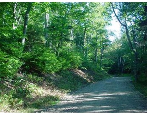Land for Sale at 21 Manley Phelps Monroe, Massachusetts 01350 United States