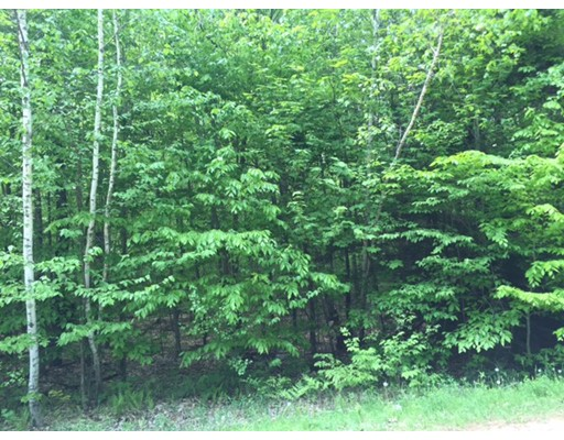 Land for Sale at Chester Road Middlefield, Massachusetts 01243 United States