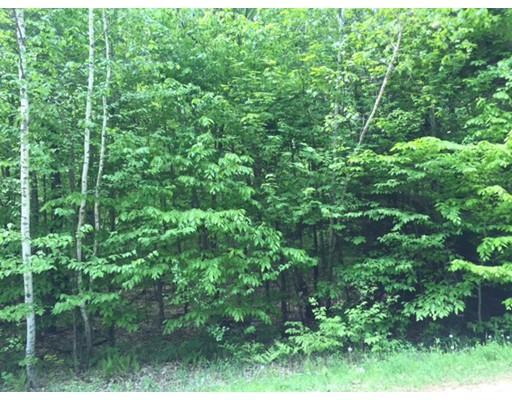 土地 为 销售 在 Chester Road Middlefield, 马萨诸塞州 01243 美国