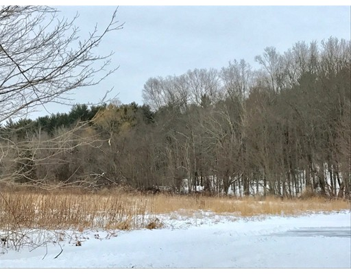 Additional photo for property listing at Henry Street  Amherst, 马萨诸塞州 01002 美国