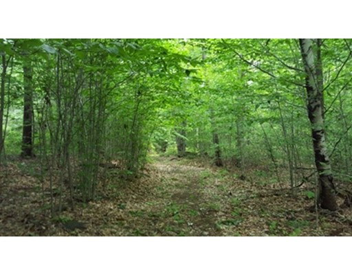 Land for Sale at Old Chesterfield Road Chesterfield, Massachusetts 01012 United States