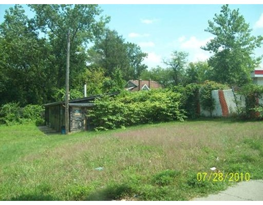Additional photo for property listing at Harvey and Sewell Street  Springfield, 马萨诸塞州 01101 美国