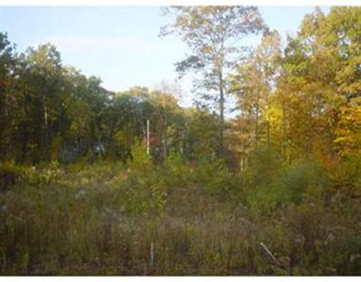 土地 為 出售 在 87 Klaus Anderson Road 87 Klaus Anderson Road Southwick, 麻塞諸塞州 01077 美國