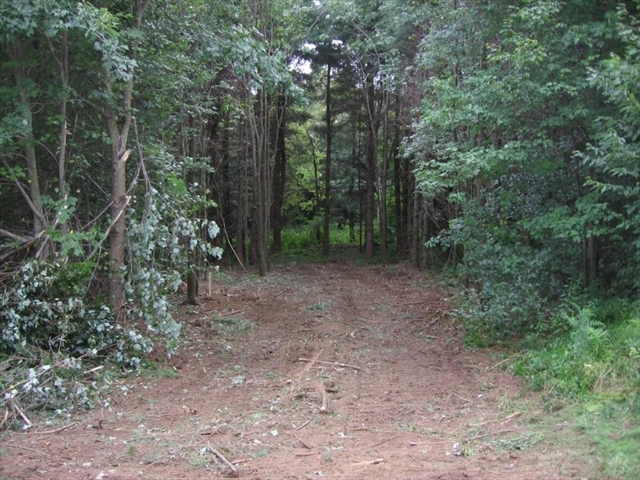 Photo #6 of Listing 8 Stump Road