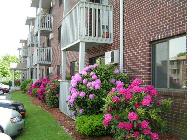 Photo #5 of Listing 1001 Westford St