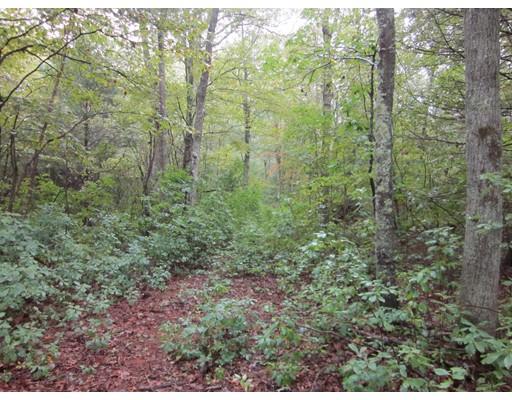 Terrain pour l Vente à 101 John Dyer 101 John Dyer Little Compton, Rhode Island 02837 États-Unis