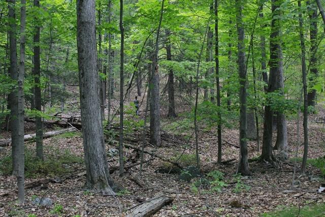 Photo #3 of Listing 9 Flat Hills Road