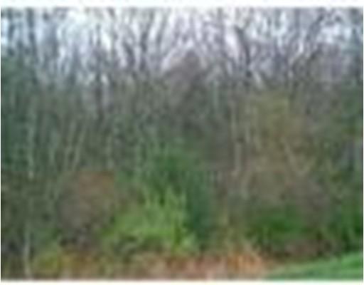 土地 为 销售 在 7 Fernmarsh Westport, 马萨诸塞州 02790 美国