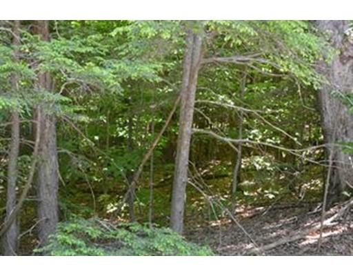 土地 为 销售 在 Wigwam Road West Brookfield, 01585 美国
