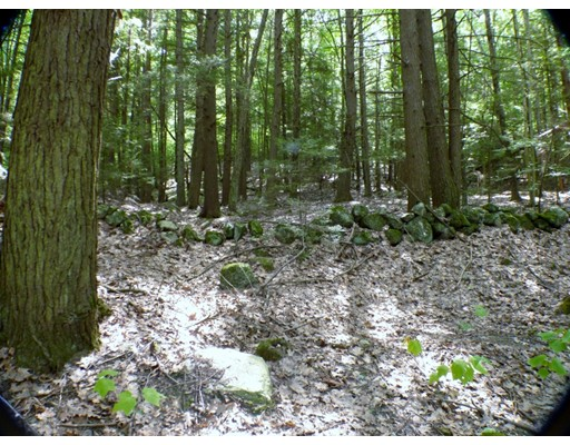 Land for Sale at 8 Orange Road Northfield, 01360 United States