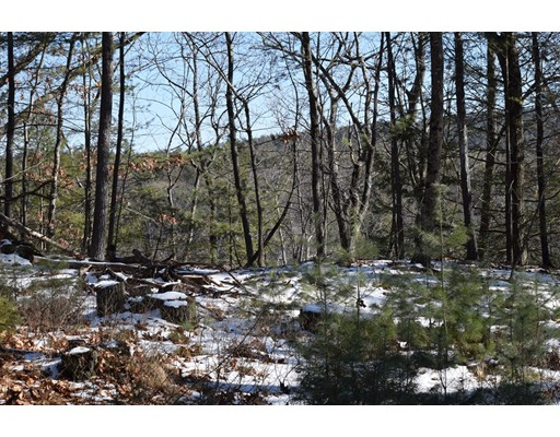 Land for Sale at Cave Hill Road Leverett, 01054 United States