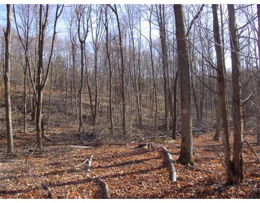 Land for Sale at 480 Mountain Road Wilbraham, Massachusetts 01095 United States