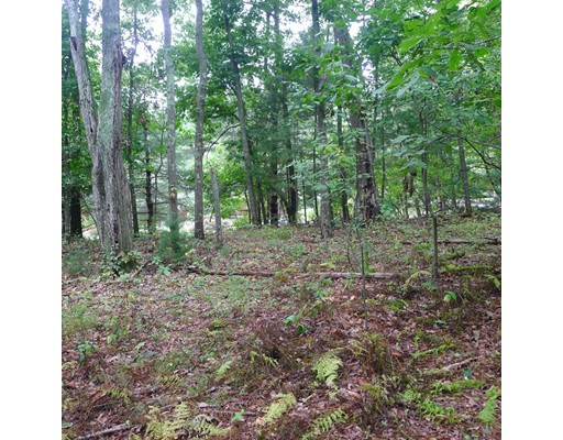 Additional photo for property listing at 5 Orchard Lane  Topsfield, Massachusetts 01983 Estados Unidos