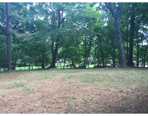 Additional photo for property listing at 21 Chestnut Street  Weston, Massachusetts 02493 Estados Unidos