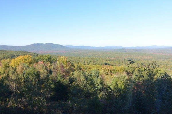 Photo #27 of Listing 215 Circuit Road