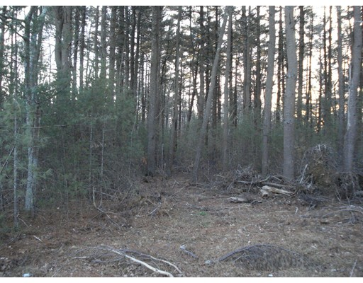 Land for Sale at Spruce Street Middleboro, 02346 United States