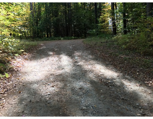 Land for Sale at 53 Schaefer Way Charlemont, 01339 United States