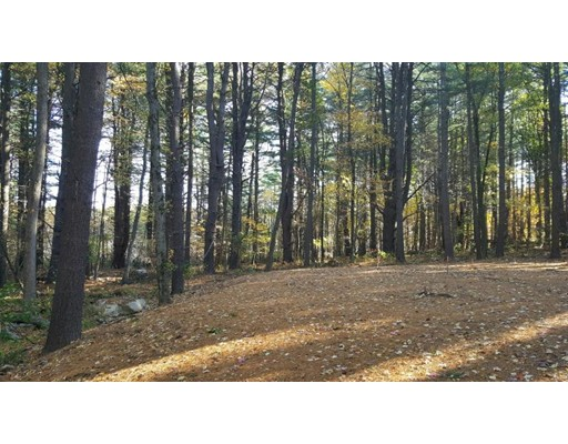 161 (Lot 3) NEWTOWN RD, Acton, MA 01720