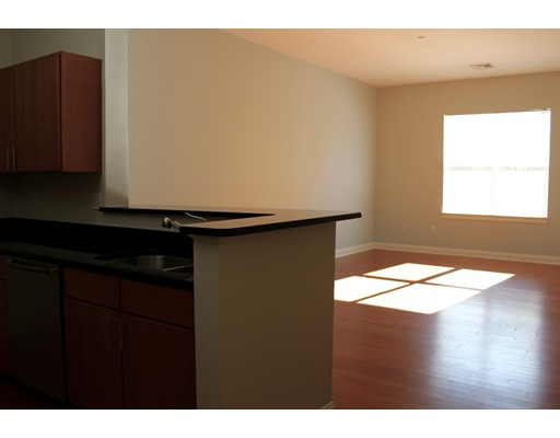 Casa Unifamiliar por un Alquiler en 40 River Boston, Massachusetts 02126 Estados Unidos