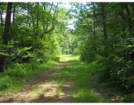 Property for sale at 75 Barre Rd, Petersham,  Massachusetts 01366